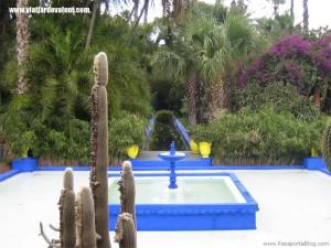 marrakech-jardi-font-cactus