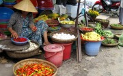 mercado-hoi-an-vietnam