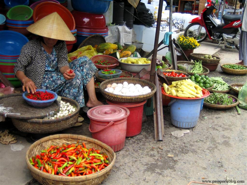 Mercat de Hoi An, Viate per Vietnam de Sud a Nort