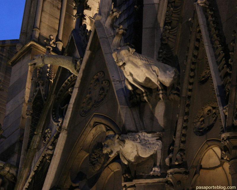 Gàrgoles en la façana catedral notre dame